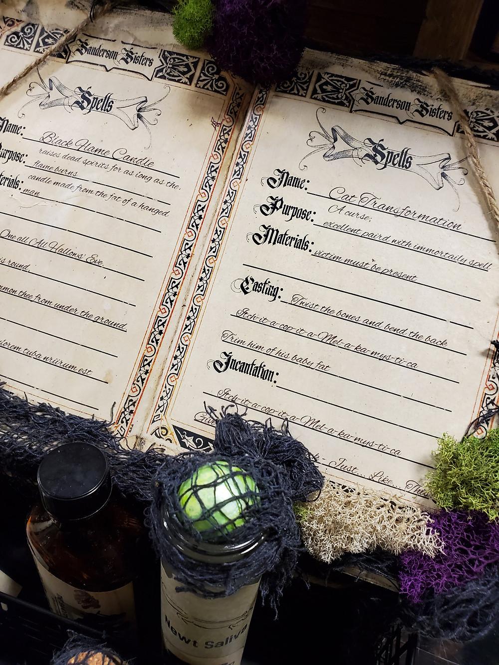 Handmade Hocus Pocus Inspired Spellbook