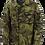 Thumbnail: チェコ軍 Vz95 フィールドジャケット ウッドランドカモ