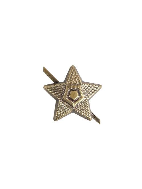 チェコ軍 ピンバッジ 星型 大 b
