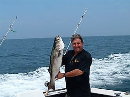 Striper in Cape Cod Bay