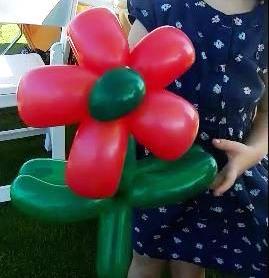 Great balloon flower2_edited