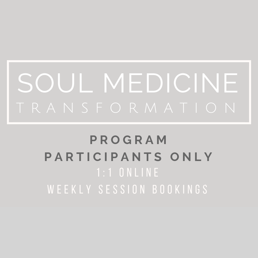 Soul Medicine Transformation Program