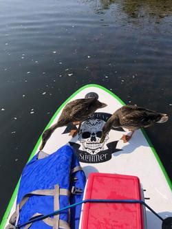 Couple of pirates!