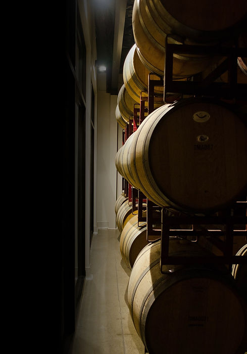 wine barrels on racks