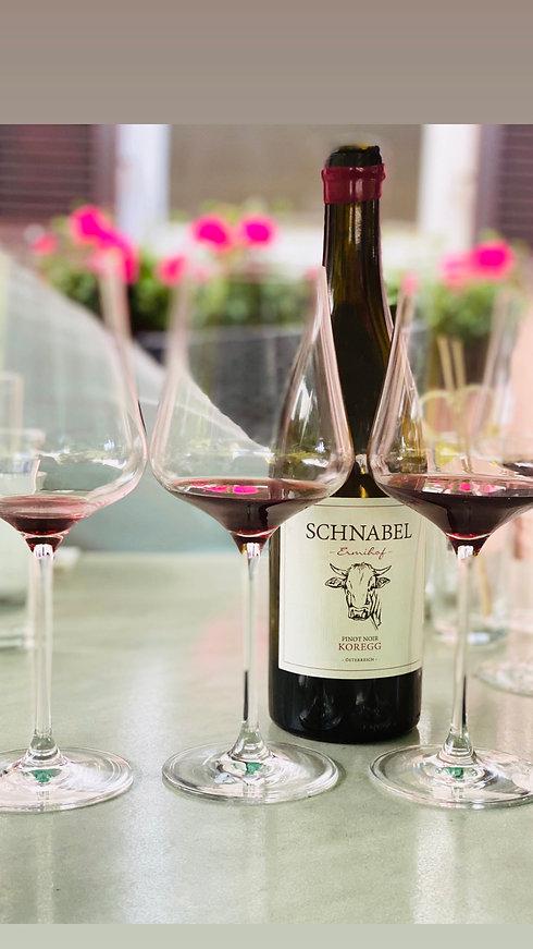 Gastgarten Trautentalwirt Gasthaus Rainer Geistthal Wein Pinot Noir Weingut Karl Schnabl
