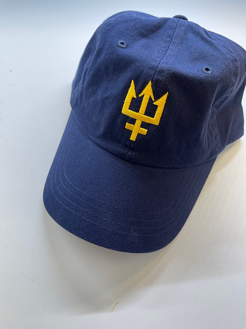 Limited Edition Mariners Baseball Hat