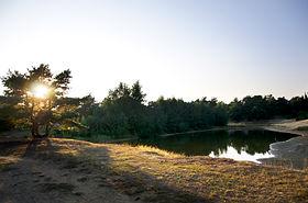 Camping_Weg_6904.jpg