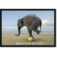 Balancing Act: Accountant, Gymnast or Human??