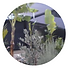 garden remodeling.png