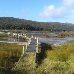 Spirits Bay board walk