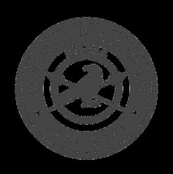 AIM Insignia.png