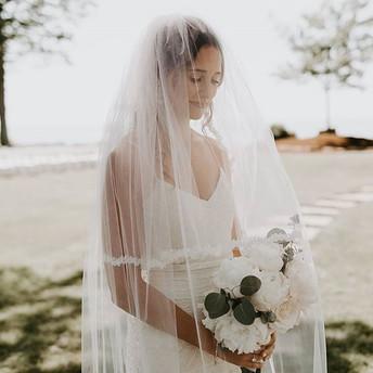 _melodylanephotos  a most beautiful brid