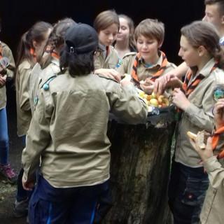 19.10.12 - Scouts 13.jpg
