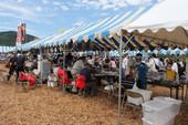 Ranzan Lavender Festival