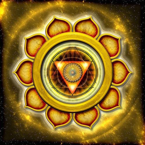 5: SOLAR PLEXUS / REAR ASPECT OF SOLAR PLEXUS