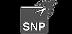SNP.png