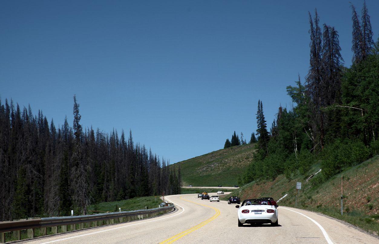 Wolfcreek Drive 6