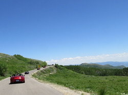 Wolfcreek Drive 1