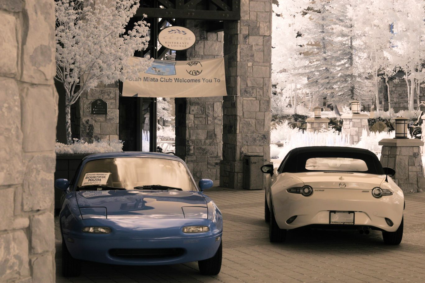 Bountiful Mazda IR