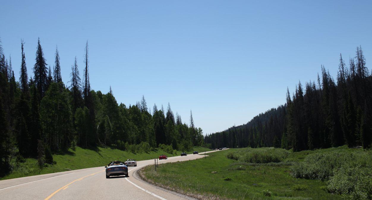 Wolfcreek Drive 5