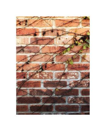 brick shine