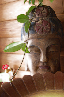 Xmas Buddha