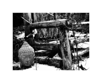 Buddha Seat