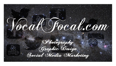 VocalFocal Business Card Design