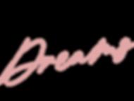 VanillaAndDream-Logo-Colour.png