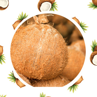 Antioxidants in Virgin Coconut Oil