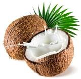 Virgin Coconut Oil for Beginners