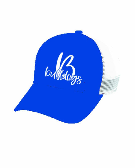 Ball Cap with Vinyl Logo