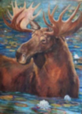 Claude in Moose Pond.jpgRochelle Draper.