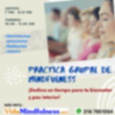Practica Grupal de MDFS 2020.png