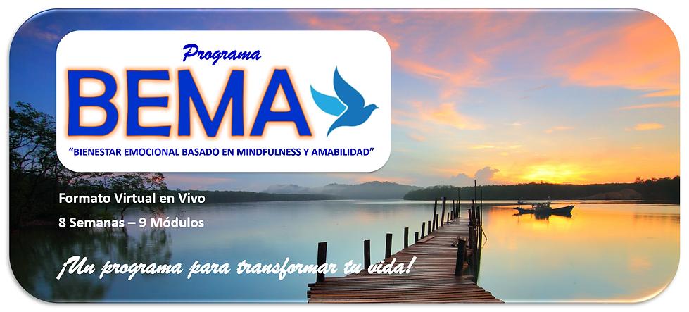 Logo BEMA con imagen.png
