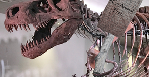 Plant-Based T-Rex?!