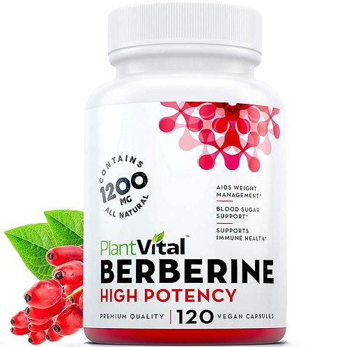 PlantVital Berberine