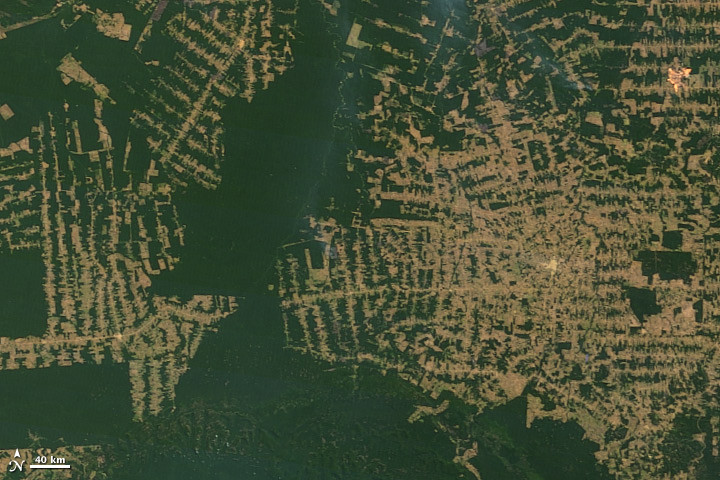 This satellite image shows the impact of deforestation of the Amazon in 2010.