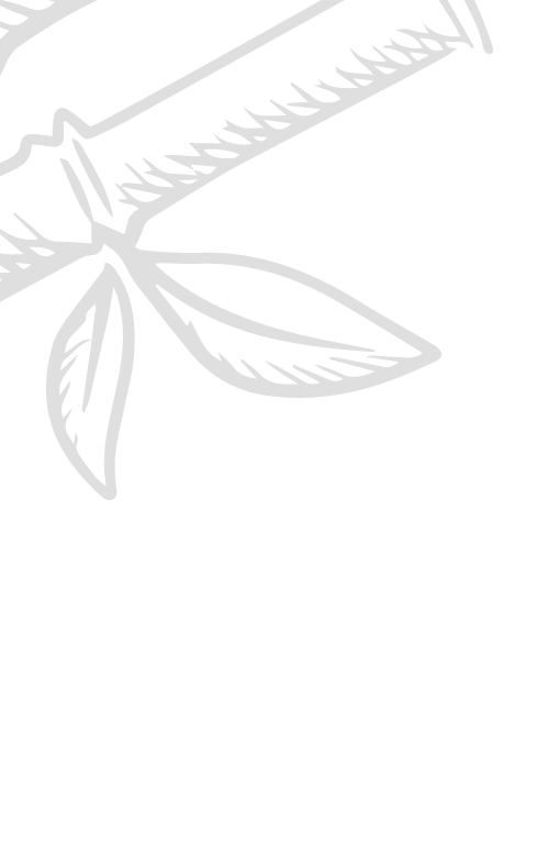 Copy of DUENDE (5).png
