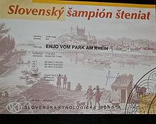 Enjo vom Park am Rhein
