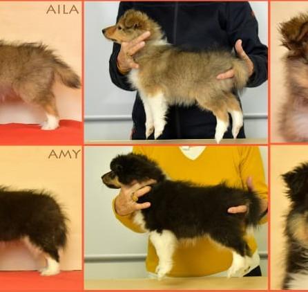Amy und Aila