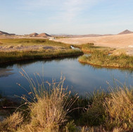 Stillness in Tecopa