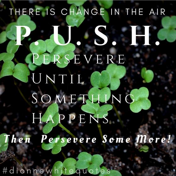 P.U.S.H. Persevere Until Something Happens