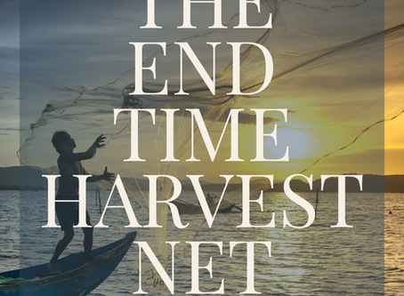 "The Kingdom ""NET""work and THE END TIME HARVEST NET"