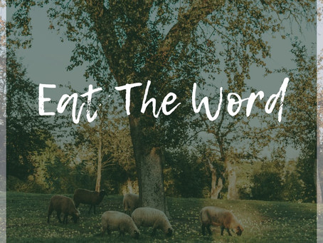 Eat the word and declare it boldly; A 5780/2020 Heavenly Strategy