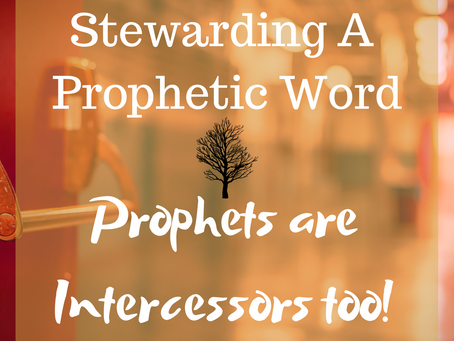 """DID I MISS IT?"" PROPHETS ARE INTERCESSORS TOO!"