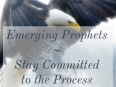 EMERGING PROPHETS -  THE PROCESS IS A GIFT