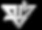 bm logo blancoisotipo.png
