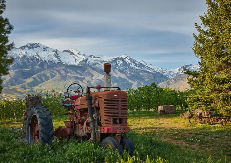 tractor 1.jpeg