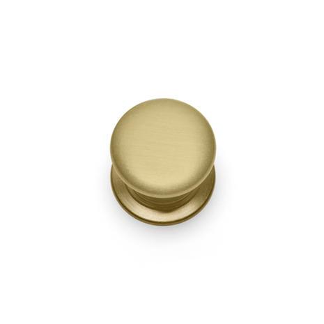 Windsor Knob Small - Satin Brass